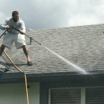 Chemical Roof Cleaning Wellington FL